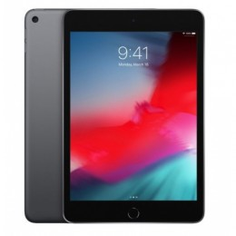 Tablet ipad mini5 wifi 256gb spaceg