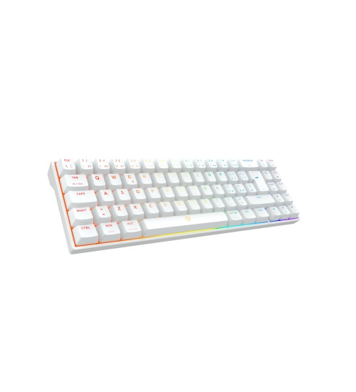 Drevo calibur v2 te 72 key wired outemu blue switch white it layout